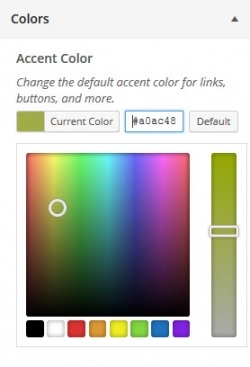 WordPress Theme Customizer Accent Colors