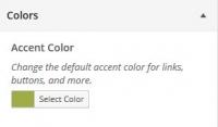 WordPress Theme Customizer Colors