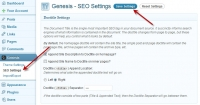 genesis-seo-settings