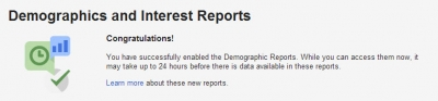 google-demographic-interest-reports-success