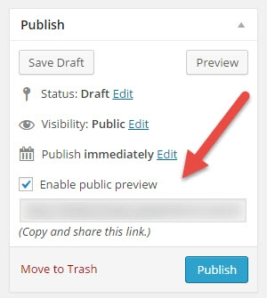 Public Post Preview Settings In the Public Metabox
