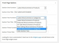 Themedy Patron Front Page Options To Display WooCommerce Products or Categories