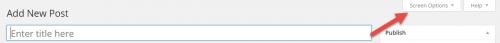 WordPress 4.0 Post Editor Screen Options