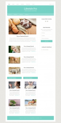 Lifestyle Pro Child Theme for the Genesis Framework by StudioPress - Full View