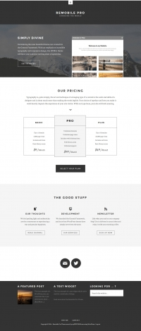 Remobile Pro Child Theme for the Genesis Framework by StudioPress - Full View