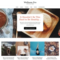 Wellness Pro Child Theme for the Genesis Framework by StudioPress