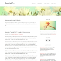 Beautiful Pro Child Theme for the Genesis Framework by StudioPress