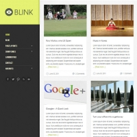 Blink Child Theme for the Genesis Framework by Themedy